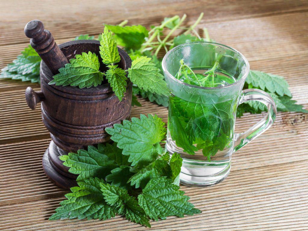 Menthe poivrée et huile essentielle