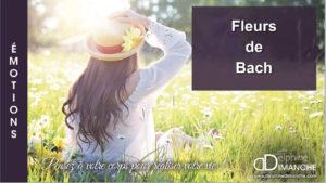 Replay webconférence : Les Fleurs de Bach